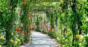 Engrais pour les parcs et jardins Penn Ar Bed